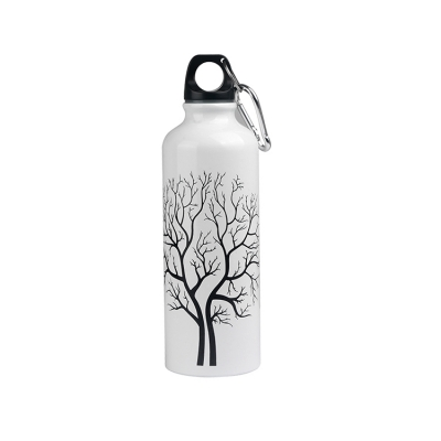 Customized cold color changing aluminum water bottle